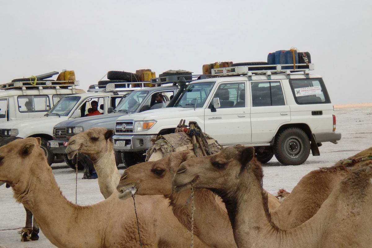 ETH_Danakil-Afar-Dallo-©-Dinkesh-Ethiopia-Tours-2.jpg