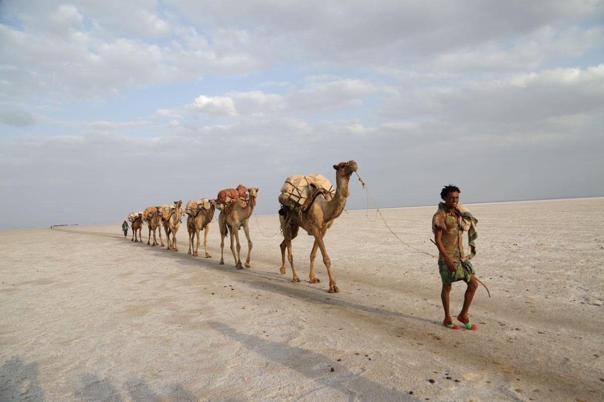 ETH_Danakil-Dallol-©-Dinkesh-Ethiopia-Tours-269.jpg