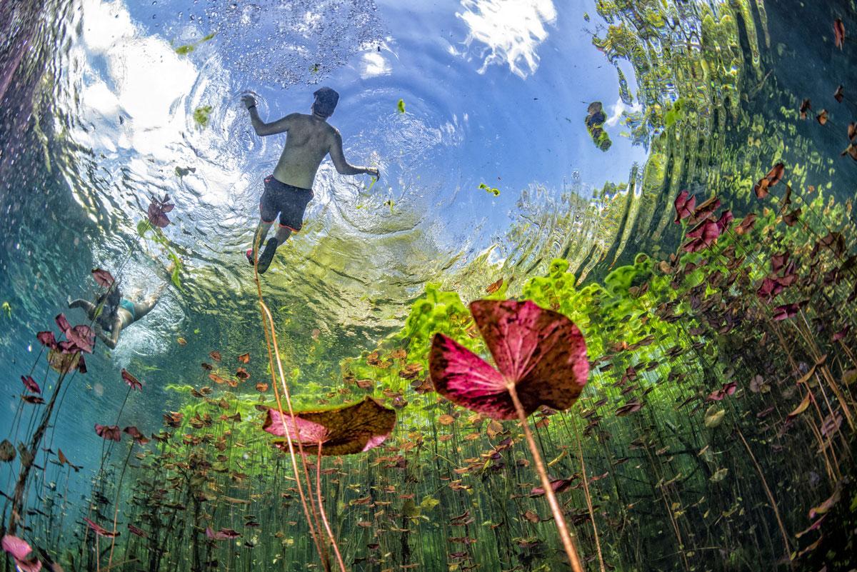 MEX_Cenotes-UW-Cave-Snorkel-©-AdobeStock_234703912.jpg