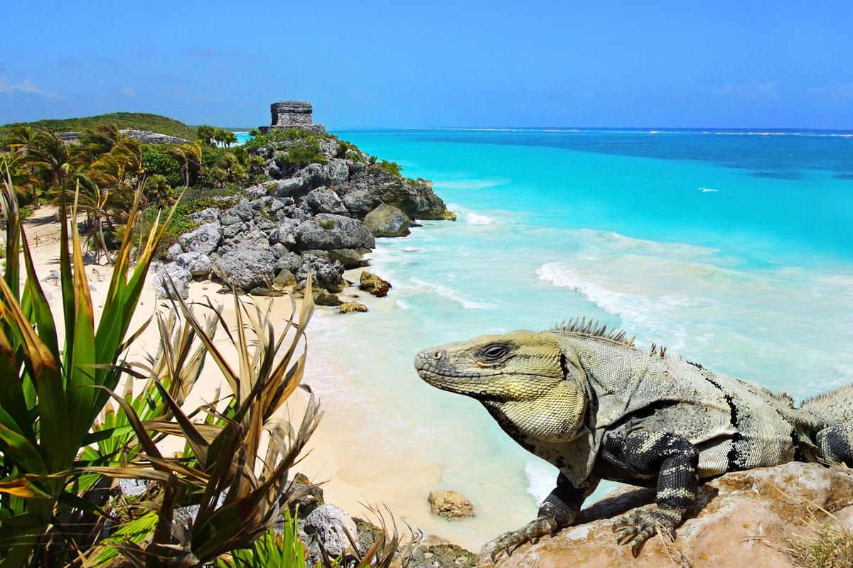 MEX_Tulum-Mayan-Ruins-©-Adobe-Stock_51324104.jpg