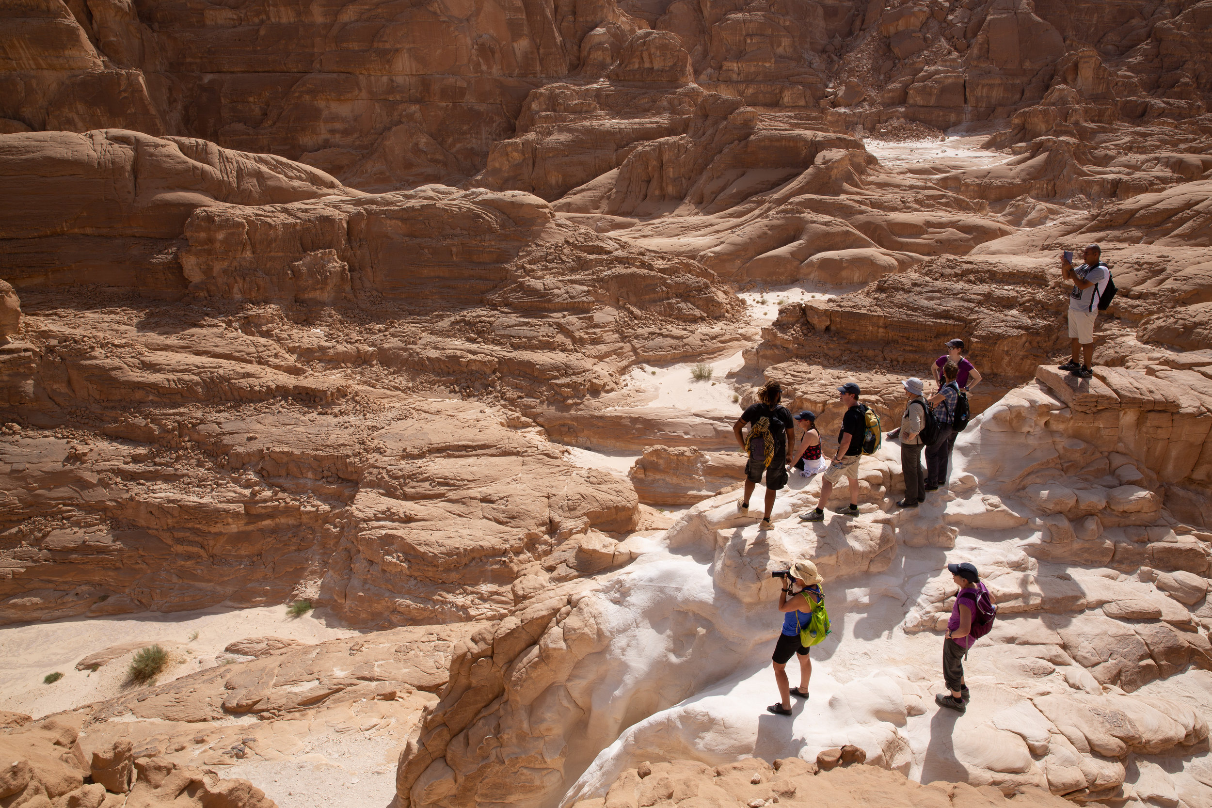 White Canyon, Sinai - Egypt - Wild Earth Expeditions