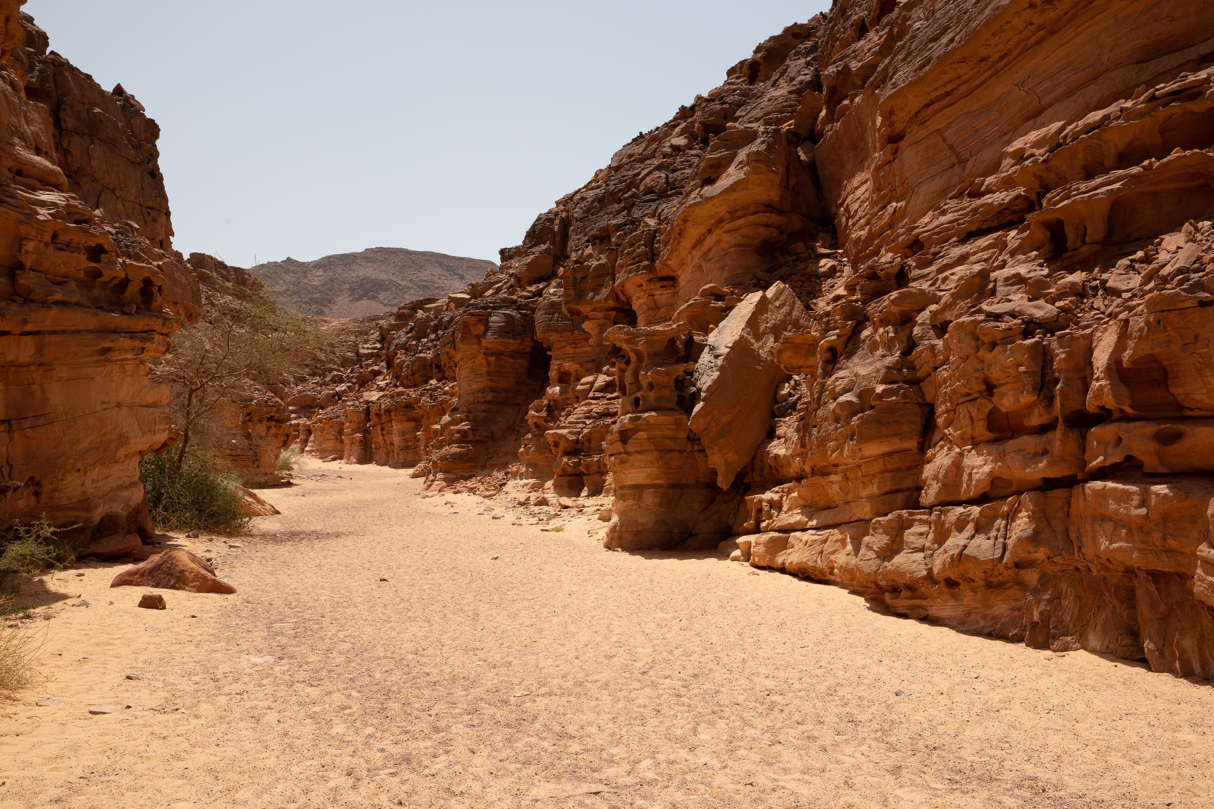 Salama Canyon, Sinai - Egypt - Wild Earth Expeditions