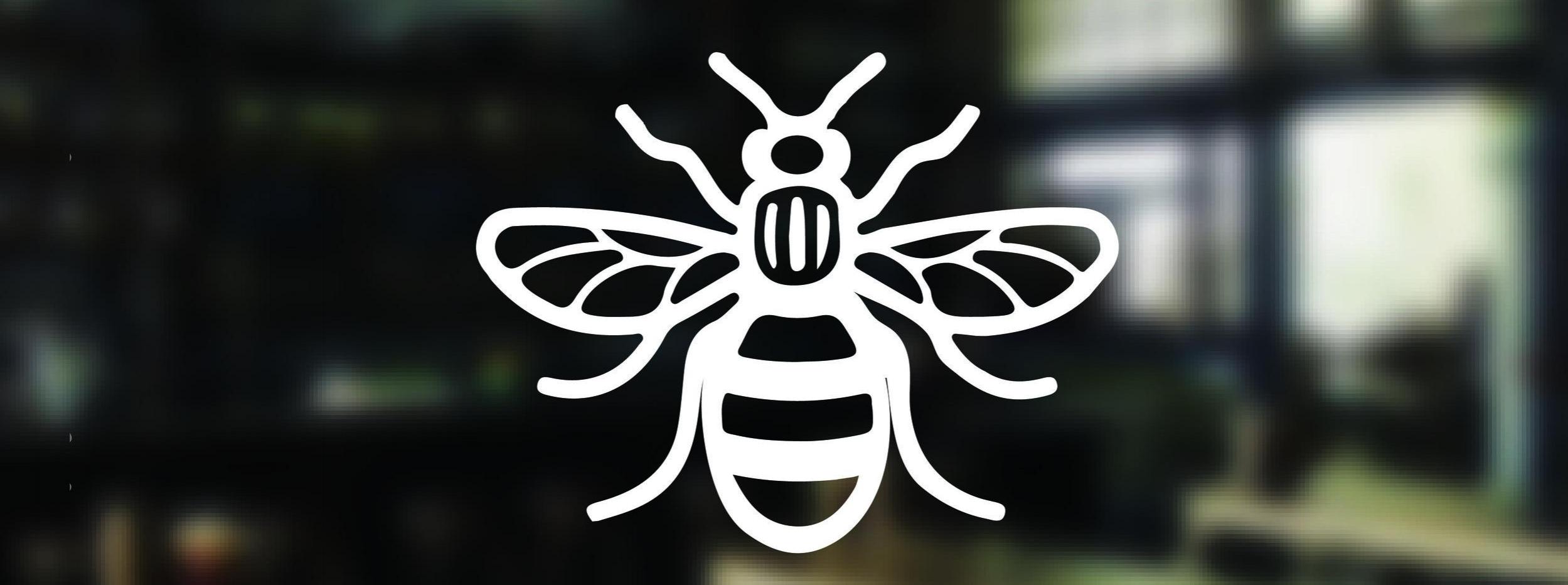 Manchester-Bee-02-01.jpg
