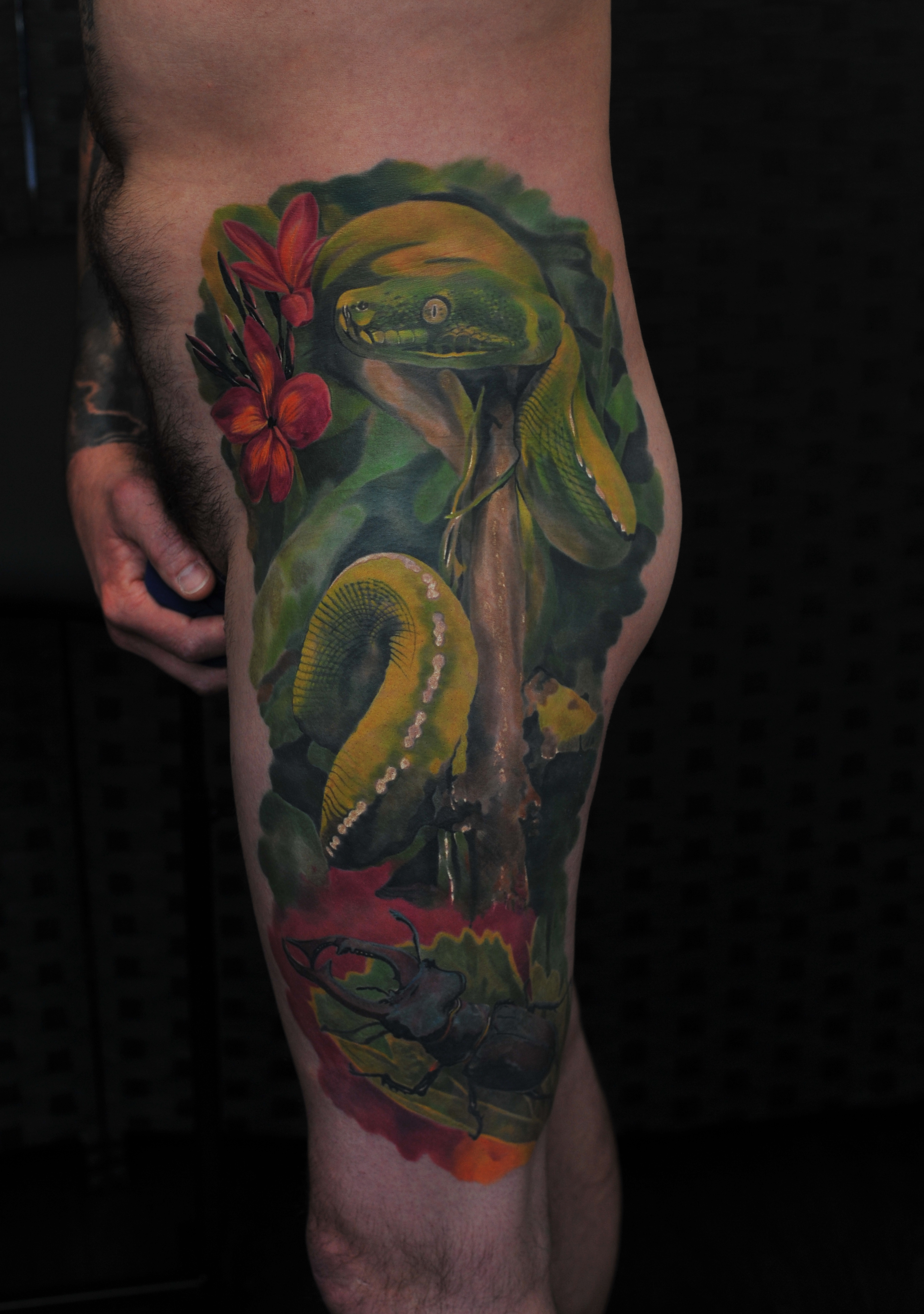 Phil's colour realism piece for which Radu pick up his best in realism award.