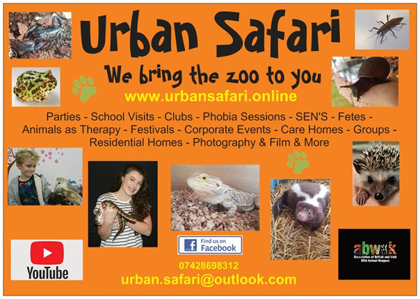 Urban Safari Flyer.jpg