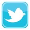 twitter-bird-icon-logo-vector-400x400white.jpg