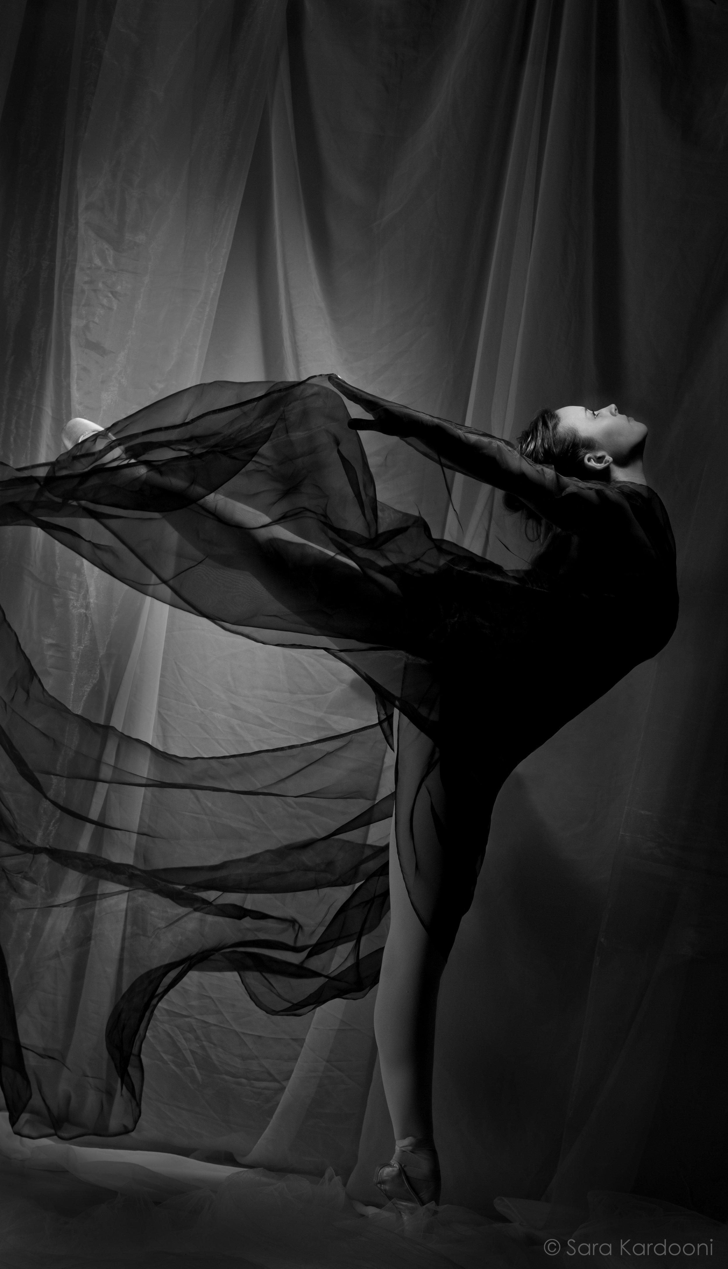 Sarah Hopkin   Canada's National Ballet School – Summer School  Royal Winnipeg Ballet – Summer School  ÉcoleSupérieure de Ballet du Québec – Summer School  Ryerson University – Dance Program  School of Toronto Dance Theatre – Summer Intensive  ProArteDanza Summer Intensive  Apprentice with Toronto Dance Theatre  (photo: Sara Kardooni)