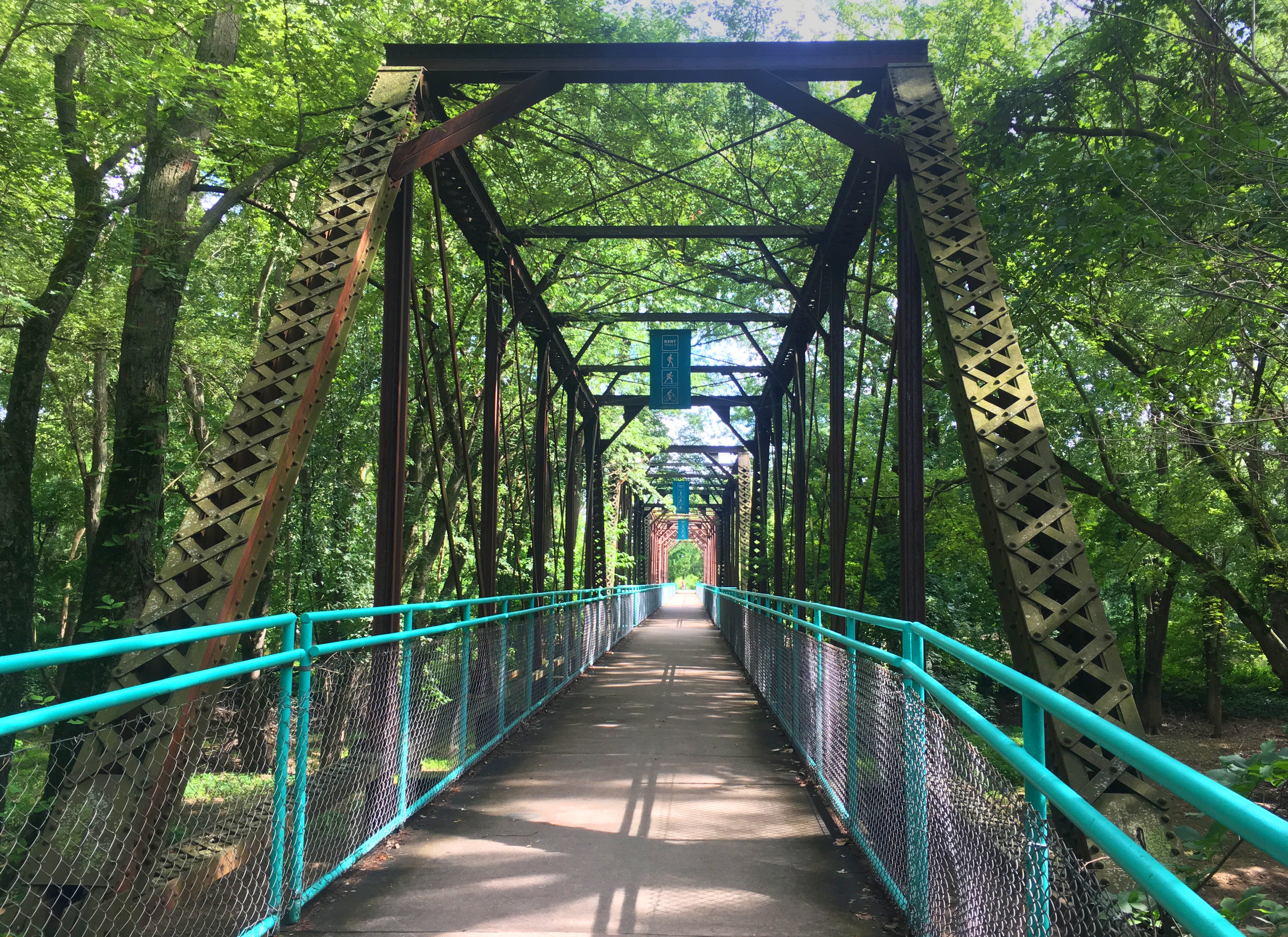 Grand River Bridge - Millenium Park