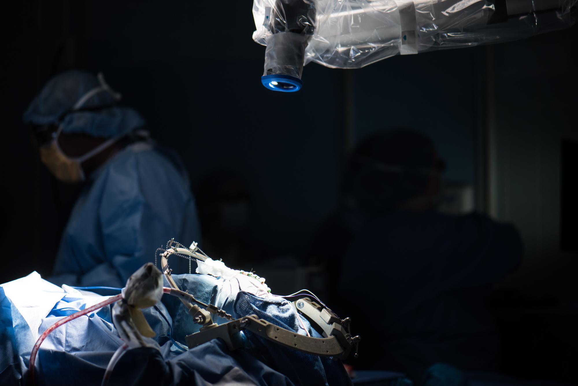 3D_Brain_Surgery_08.jpg