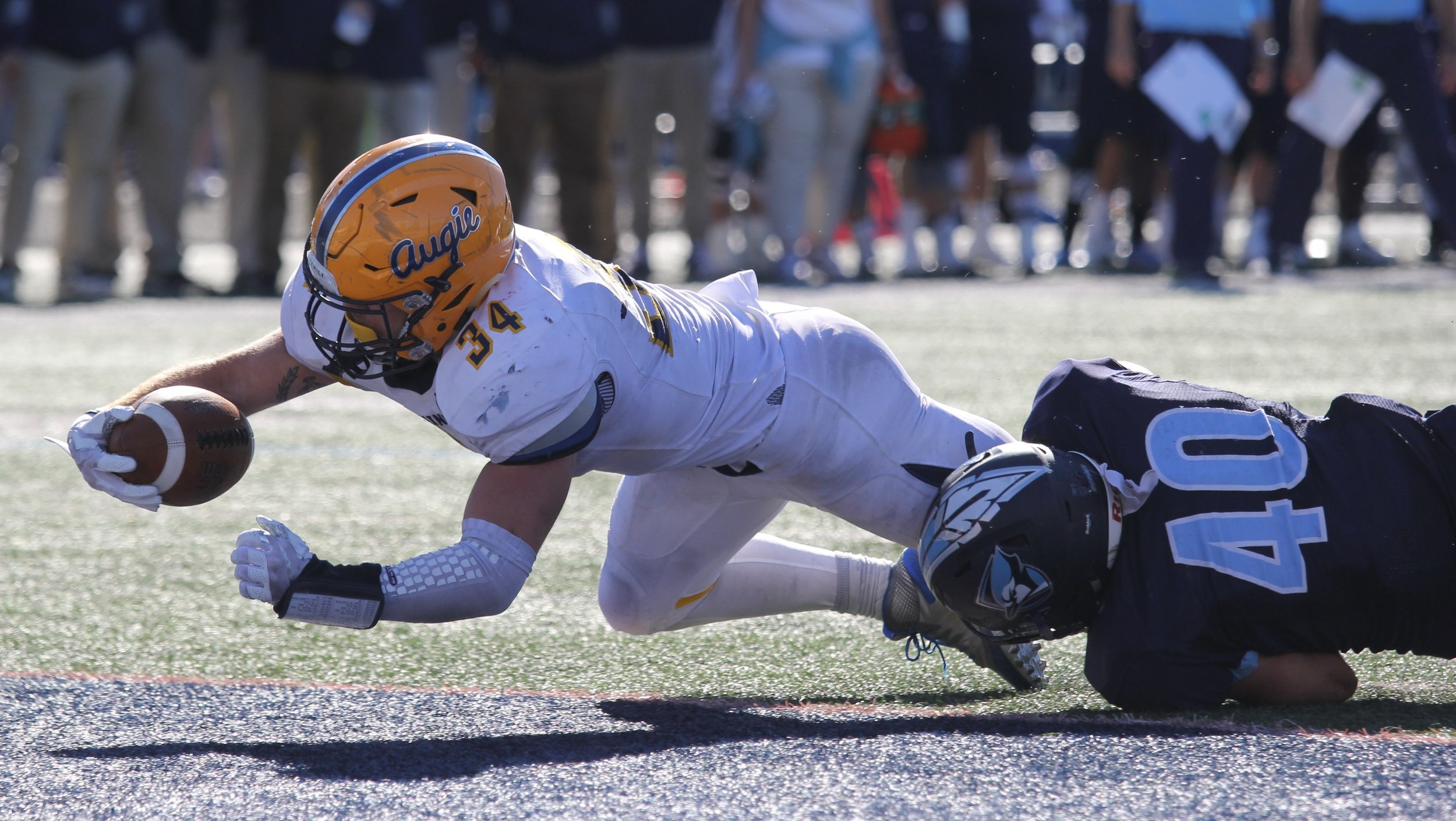 Augustana junior running back Ryan Pitra scores a touchdown with 1:21 remaining against the Bluejays at Langhorst Field on Sept. 30.  Photo by Cole Sheeks