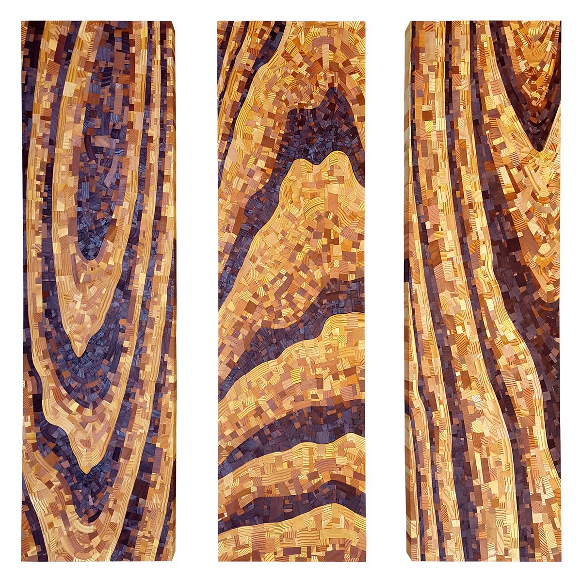 Oak Floor Study  by Chris DeKnikker. Collected wood (walnut, wedge, cherry, fir), 3 @ 36in x 10in x 2in