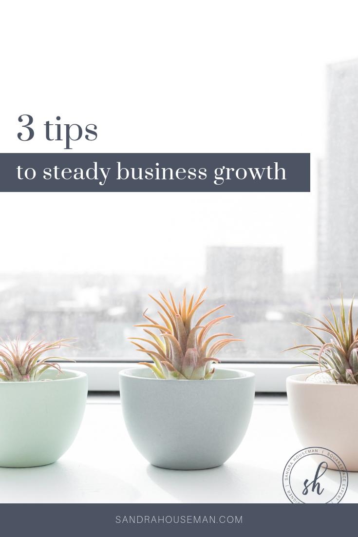 Sandra Houseman_3 tips to steady business growth_Pinterest Blog Image
