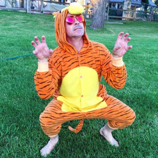 """The wonderful thing about Tiggers, is Tiggers are wonderful things..."""