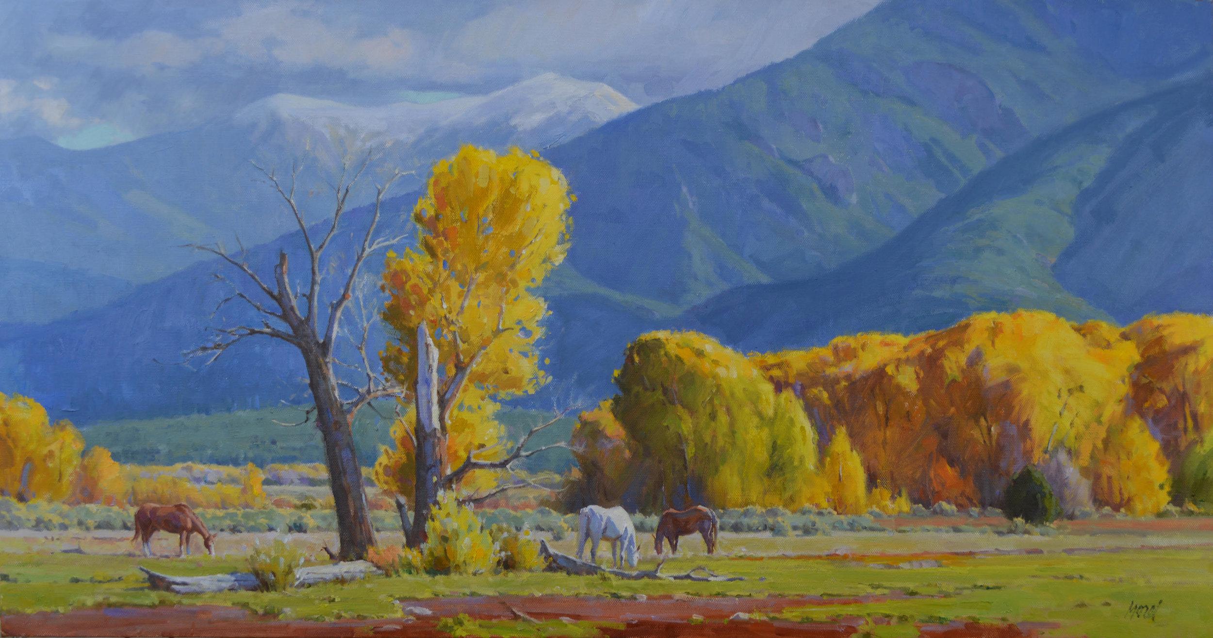 "'Across the Pueblo'    24"" x 46"" Oil on Linen"