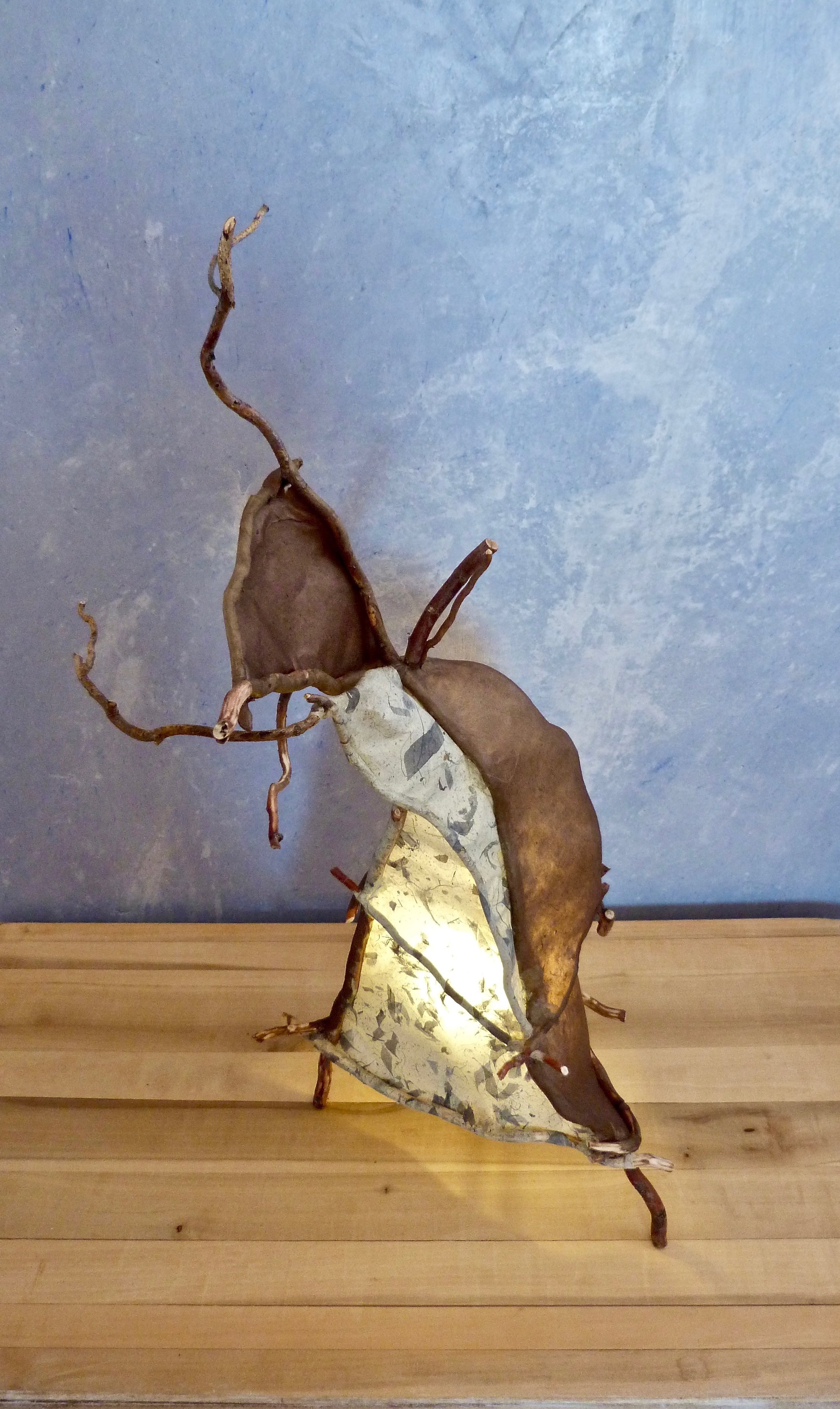 Harvester ant aging, still happy ,  Lamp. Curly willow branches, handmade paper