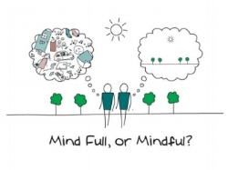 MindFull.jpg