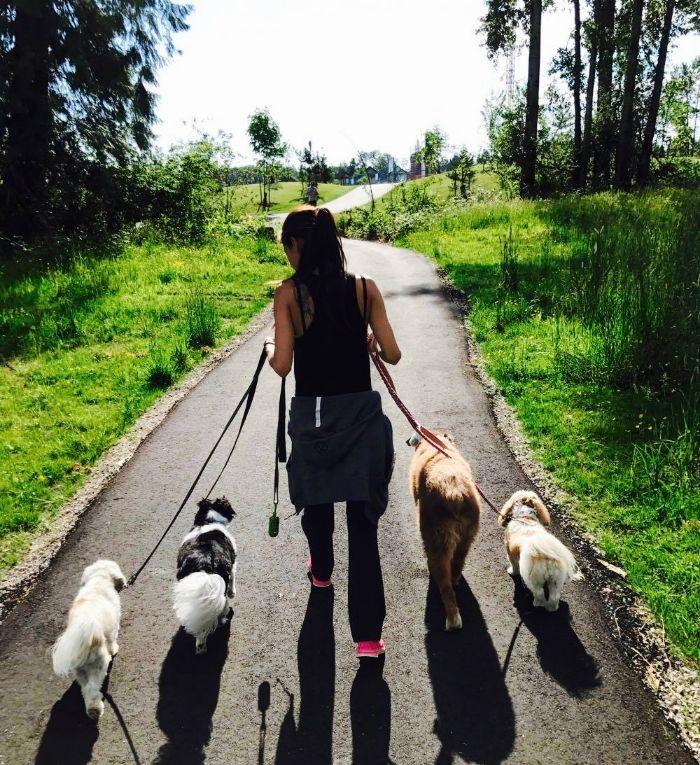 Dog+Walkers.jpg