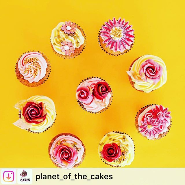 Some more from the shoot @stephaniemaciuk and myself self did for the amazing @planet_of_the_cakes . #cakes #flatlay #yellow #regram #photography #cupcakes