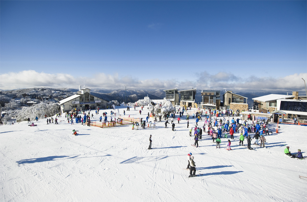 mbt31_mount_buller_sightseers