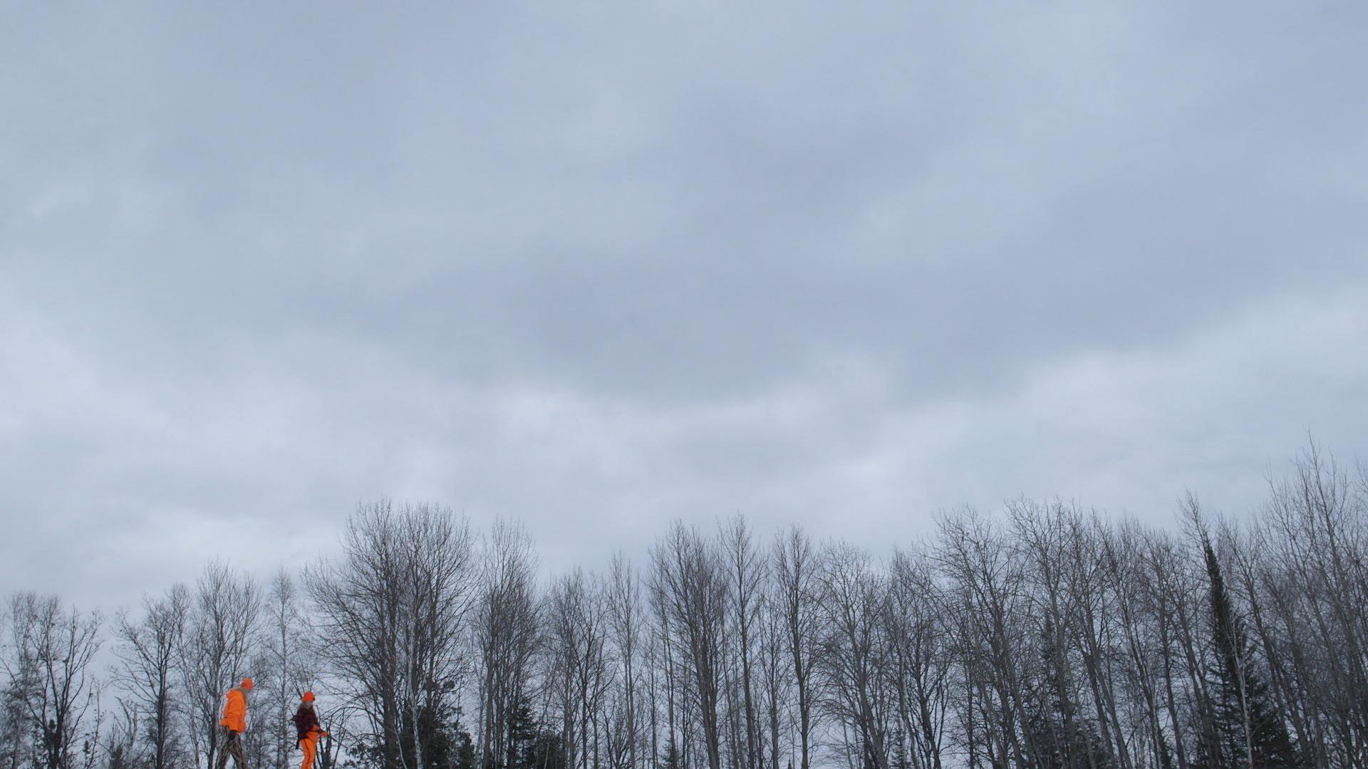 COLD 5.jpg
