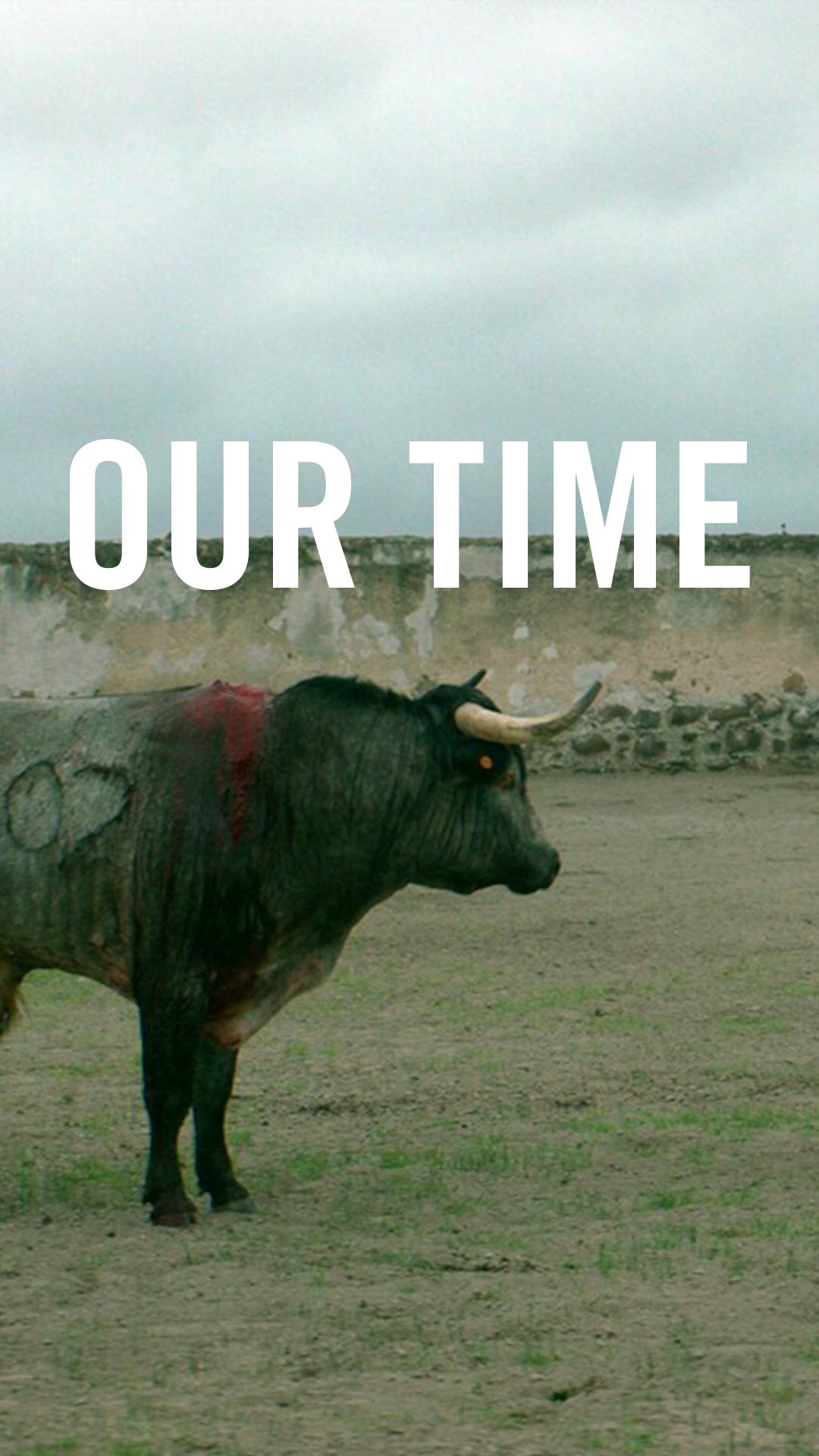 ourtimebull.jpg