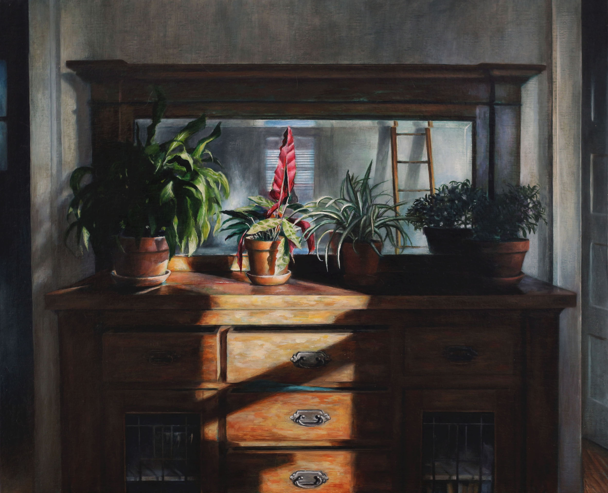 Sunlit Plants   2017  Oil on linen  16 x 20 inches