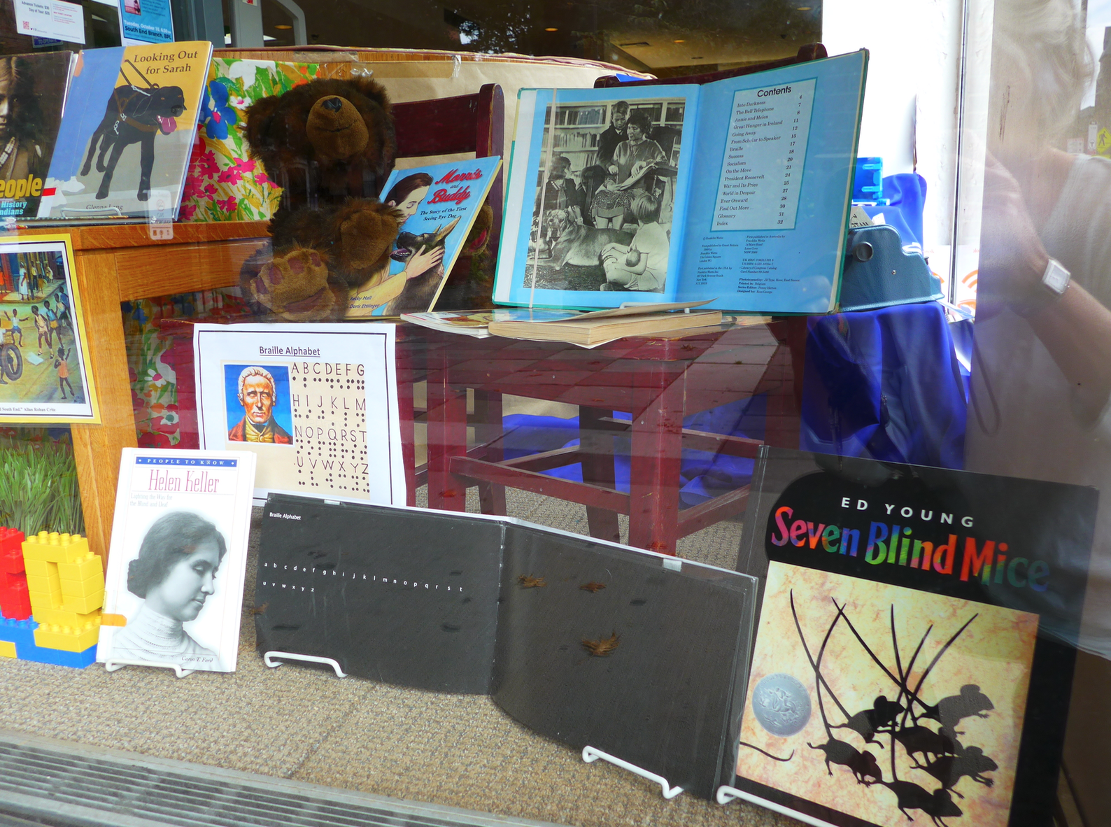 A corner of the Library Park side window includes books about blindness for children
