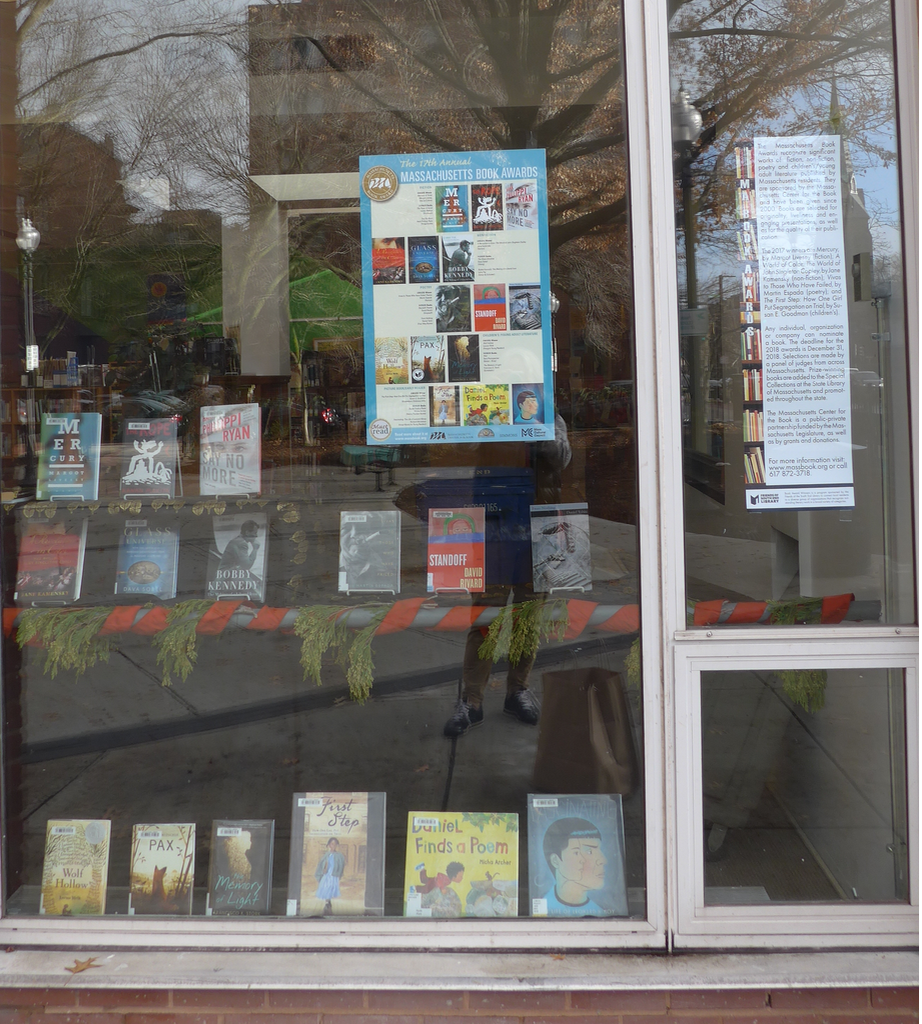 The first display in the South End library's Book Award window. FOSEL has ordered window banners for the project, which will be installed as soon as they come in.