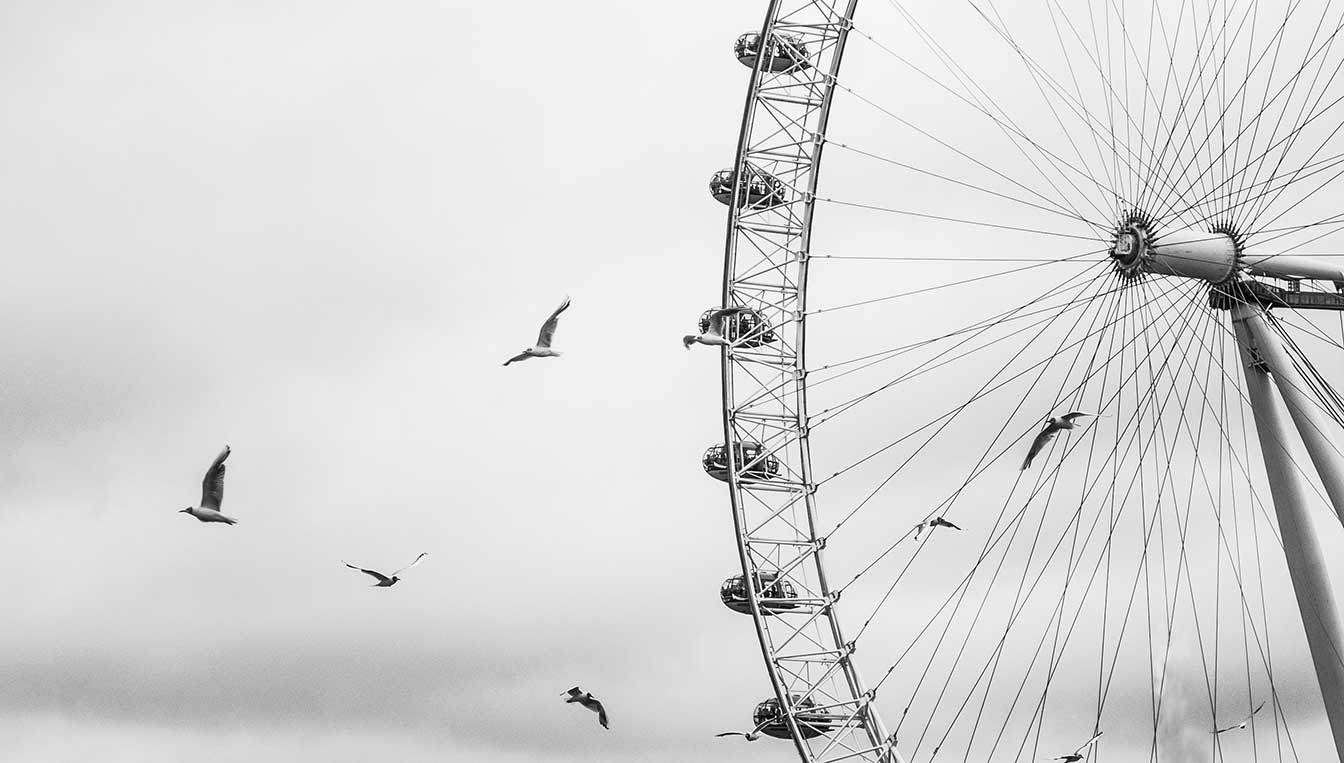London-Eye-Birds_WEB.jpg