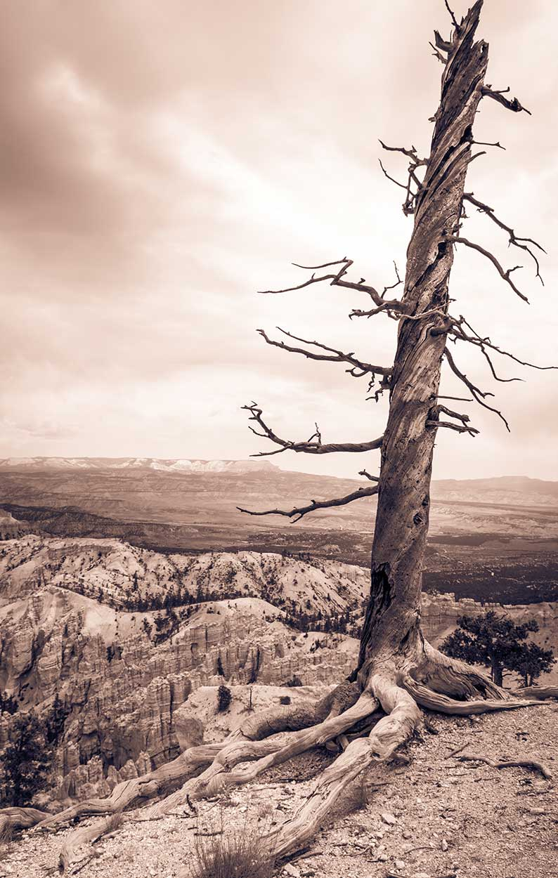 Bryce-Canyon-2.jpg