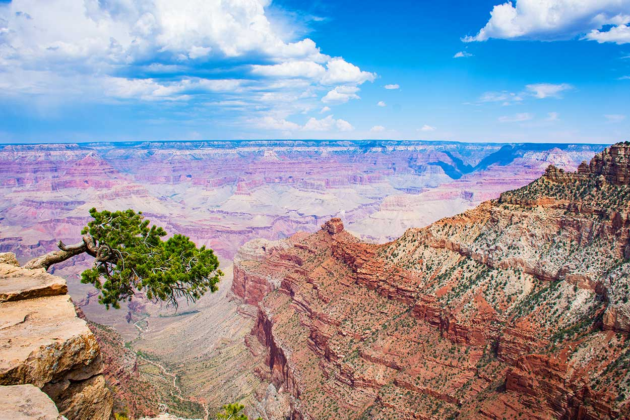 Grand-Canyon-5_WEB.jpg
