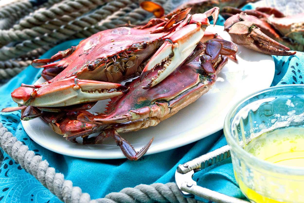 Crab_WEB.jpg