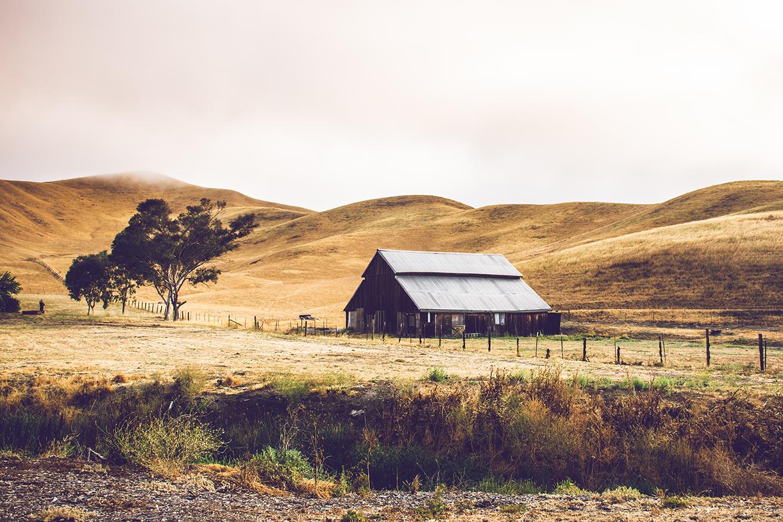 California Landscape 2_WEB.jpg
