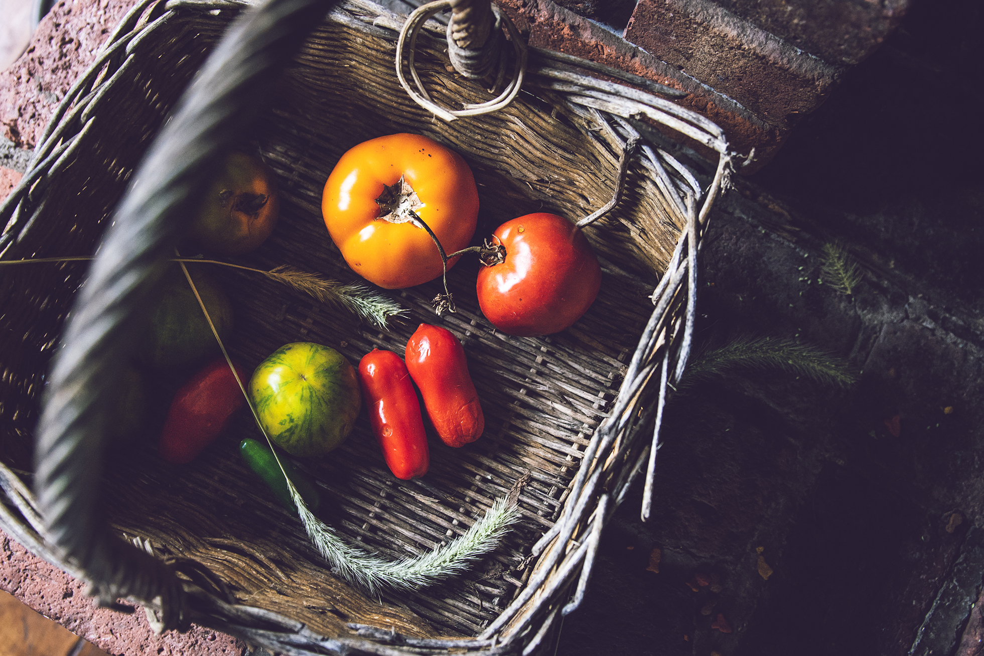 Tomatoes and Peppers Food Photography_WEB.jpg