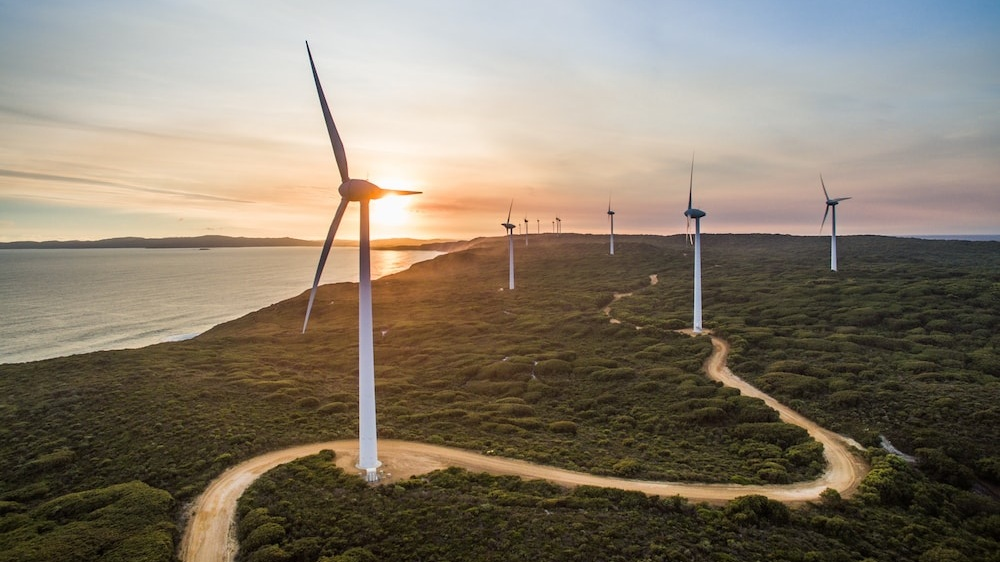best-western-albany-apartments-hotel-motel-accommodation-attractions-wind-farm.jpg