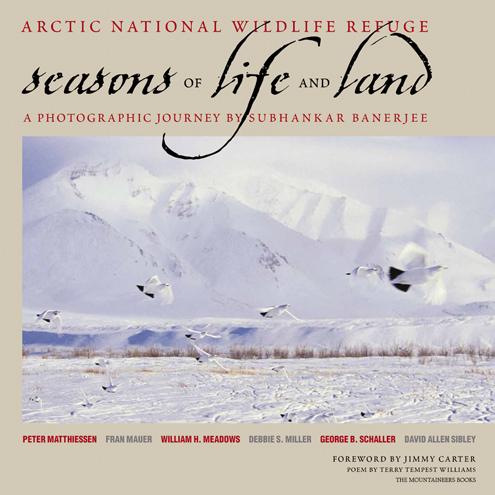 Arctic_national_wildlife_refuge_seasons.jpg