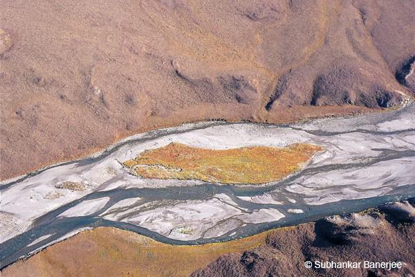 Autumn along the Hulahula River, Arctic National Wildlife Refuge / by Subhankar Banerjee
