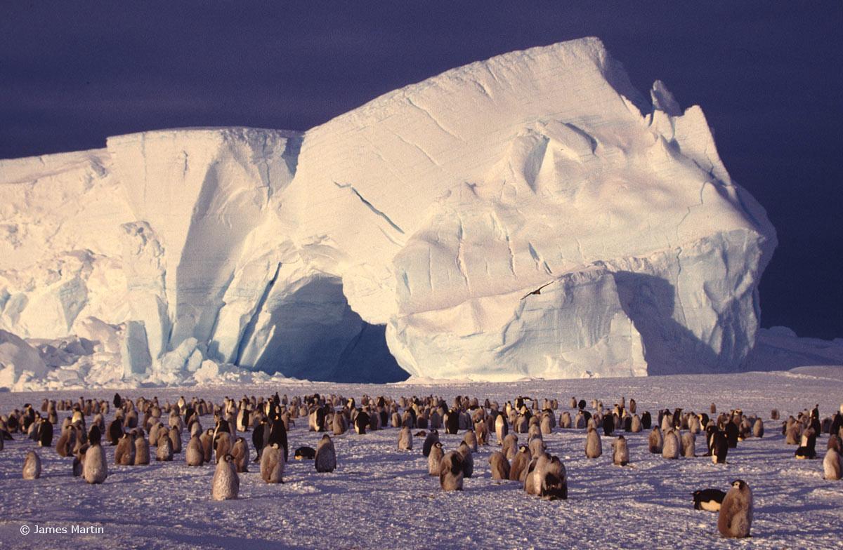 Antarctica1-3_WEB.jpg