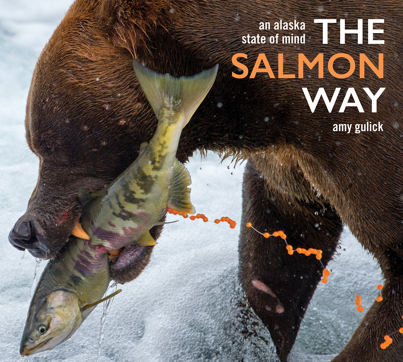 TheSalmonWay_Cover_Final_WebS.jpg