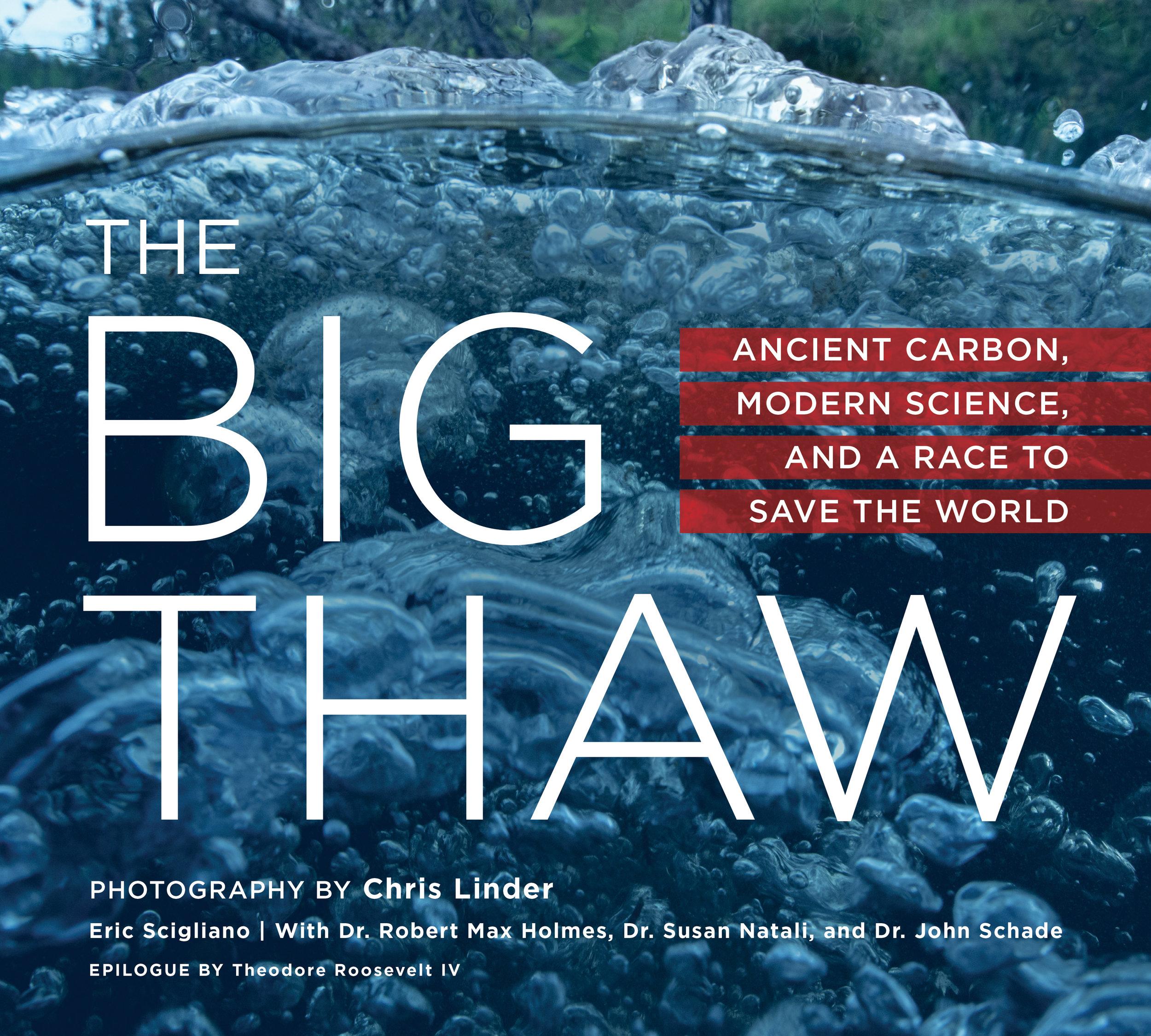 BigThaw_Cover_Final_WEB.jpg