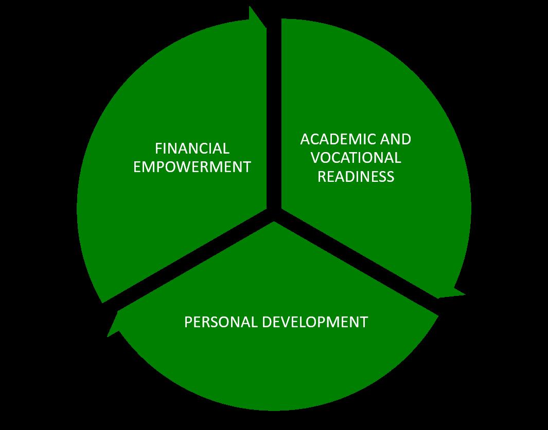 The Protege Project Programmatic Pillars.