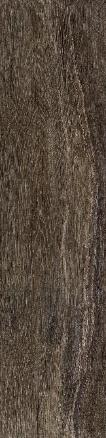 Amazonia Oiba Brown