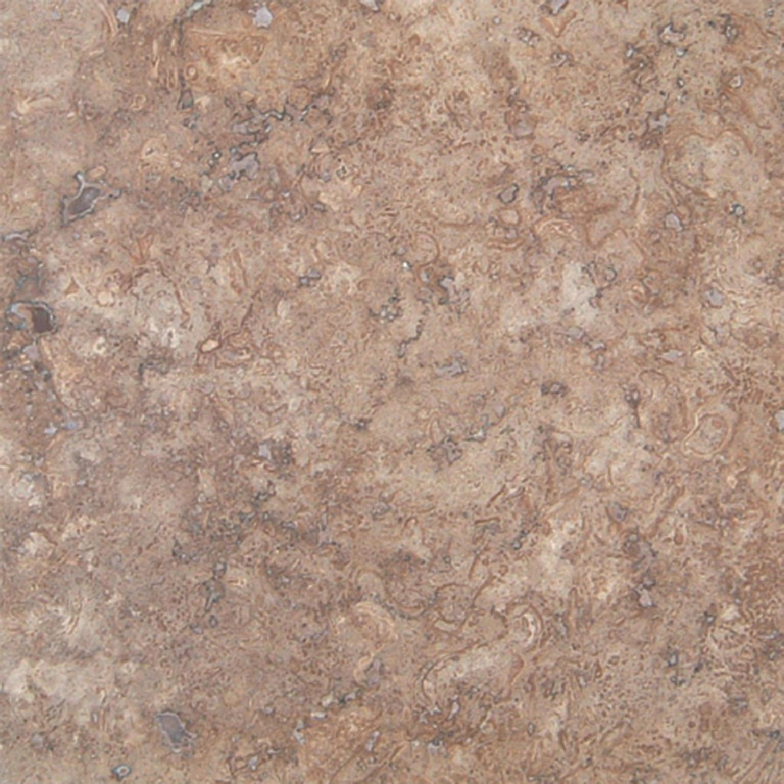 Mexican Travertine  Chocolate
