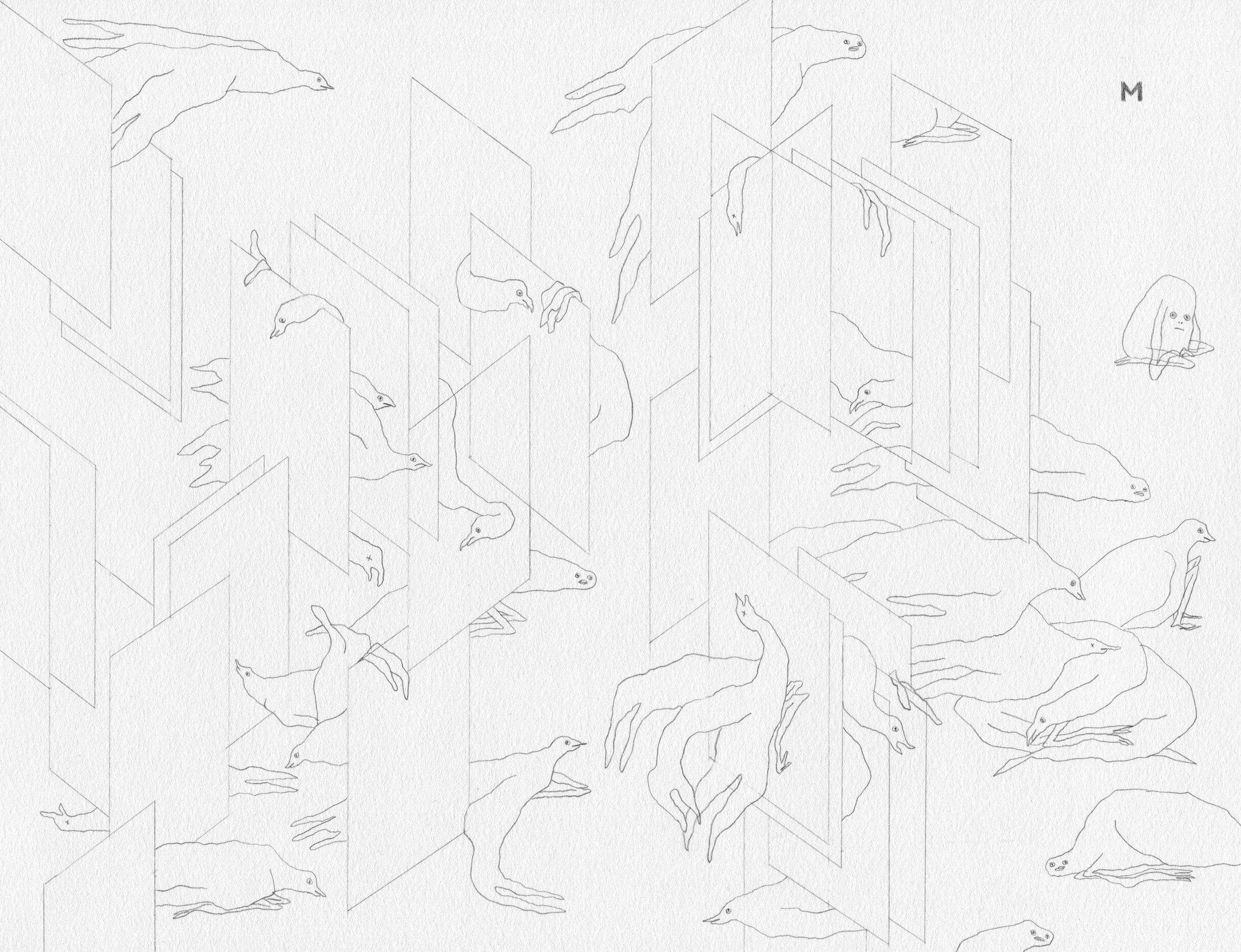 bird-walls122.jpg