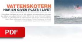 """SNOWMOBILE - 2010    """"PWC Endurance 2010"""""""