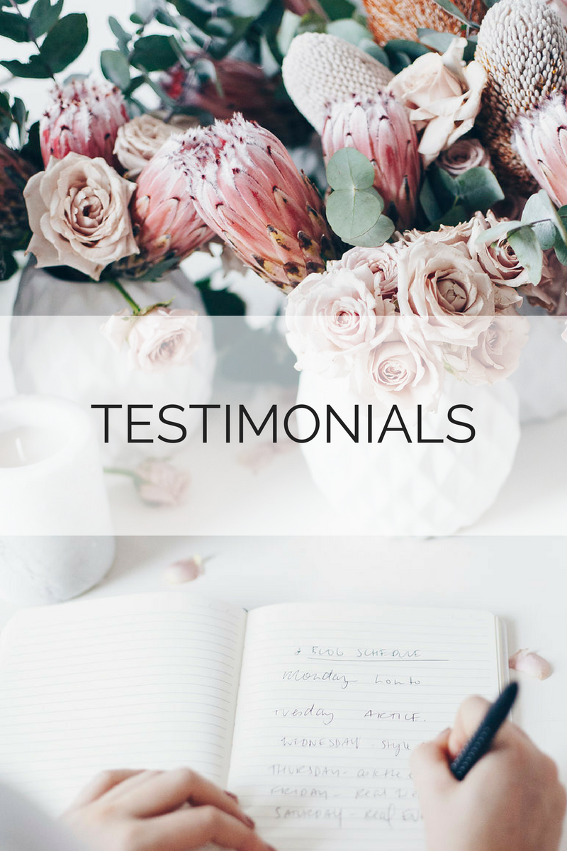 Pip & Beau testimonials from small business owners for content writing services