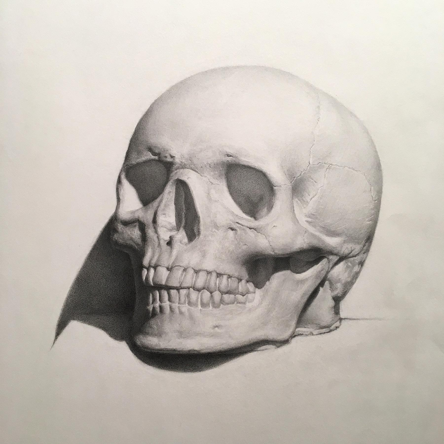 krystyna_skull.jpg