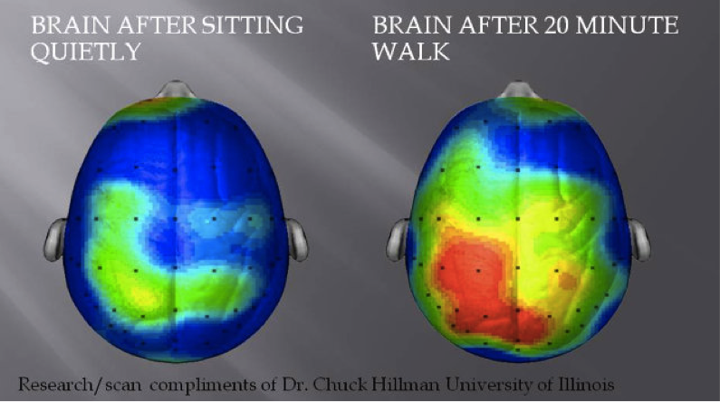 Figure 1: What happens to our brains when we exercise and how it makes us happier. (Accessed 2015)
