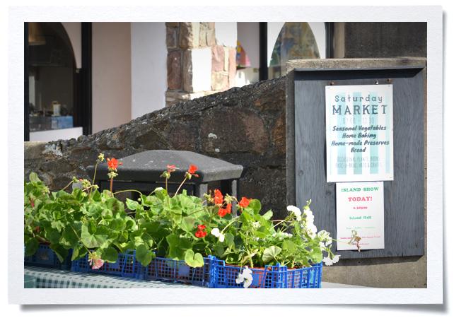 Frame - Sat Market.jpg