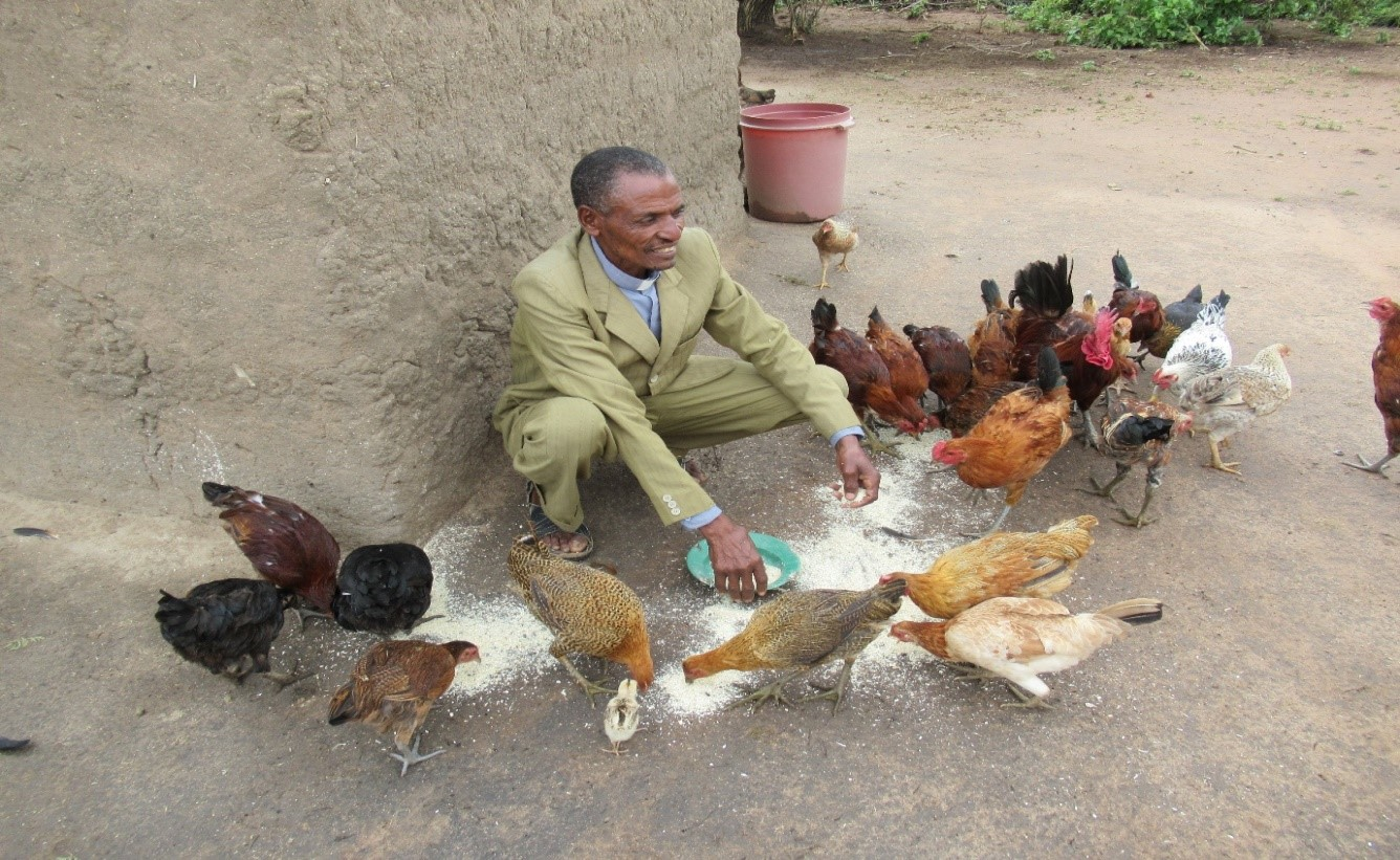 Pastor George proudly showed us his chickens